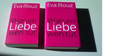 Eva Illouz: Warum Liebe weh tut